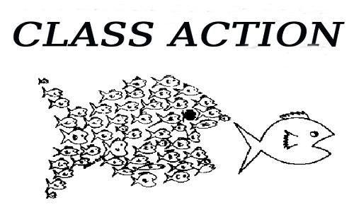 Azione di Classe: Il Disegno di Legge che potrebbe tutelare meglio i diritti dei lavoratori