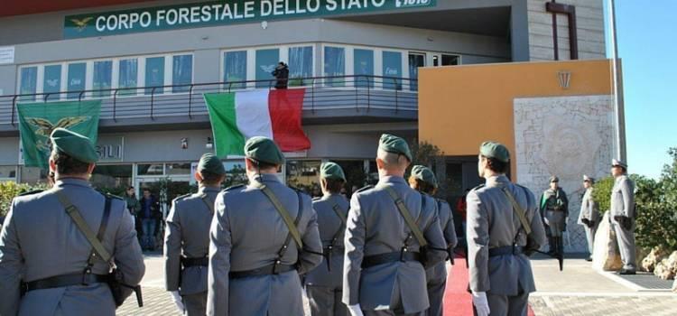 organizzazione forestale carabinieri